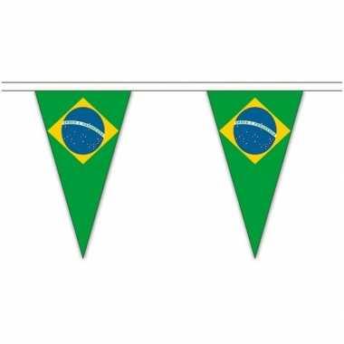 Braziliaanse brazilie landen punt vlaggetjes 20 meter