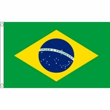 Braziliaanse vlag mini 60 x 90 cm