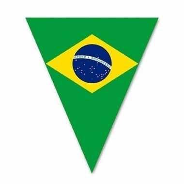 Braziliaanse vlaggenlijn voor buiten 5 m