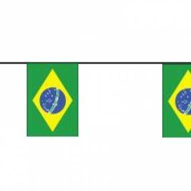 Braziliaanse vlaggetjes slinger