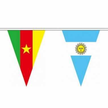 Braziliaanse  Wereld vlaggenlijn 11 meter