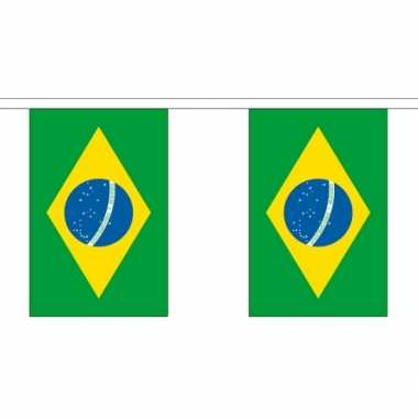 Luxe Braziliaanse vlaggenlijn 3 meter